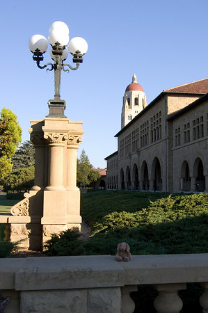 pierre at stanford