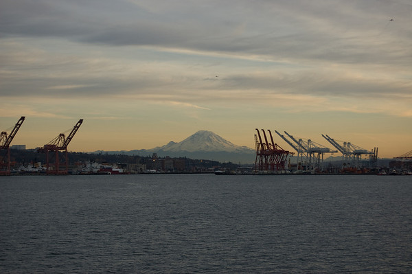 rainier with the cranes