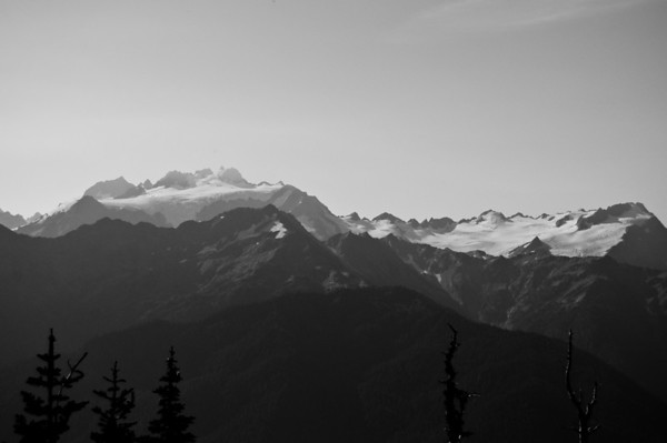 black and white mt olympus